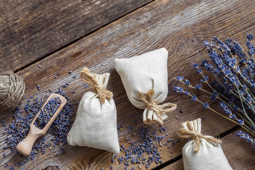 kleidermottenbefall tipps die zur kleidermottenbek mpfung helfen. Black Bedroom Furniture Sets. Home Design Ideas